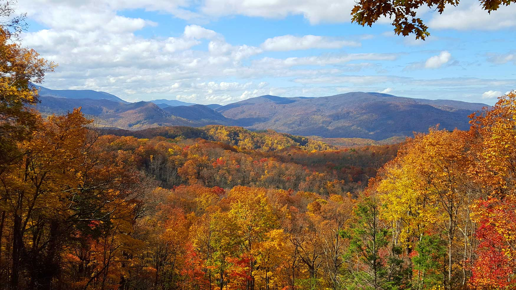 stunning photo of mountains with fall colors in Gatlinburg Tn